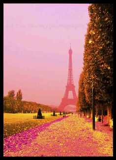 Pink Paris- takes me back to my honeymoon.didn't go during the spring but it's beautiful! PARIS thru magnificant photograhpy! Oh Paris, Paris Love, Pink Paris, Paris Torre Eiffel, Paris Eiffel Tower, Oh The Places You'll Go, Places To Travel, Places To Visit, Beautiful World