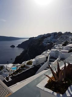 Live Dream Create - D  Visiting Santorini then read all about what to expect when visiting! #santorini #truthsandexpectations #visitsantorini
