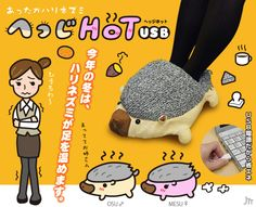 A usb foot warmer. I am so finding one of these when we get to Japan.