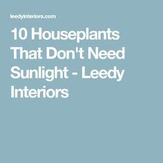 10 Houseplants That Dont Need Sunlight - Leedy Interiors - My Interior Design Ideas Maintenance Jobs, Plantas Indoor, Backyard Gazebo, Backyard Ideas, Inside Plants, Starting A Garden, Bathroom Plants, Bathroom Ideas, Landscaping Tips