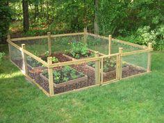 Our cute garden!!