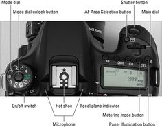 External Camera Controls on Your Canon EOS - dummies Nikon D5200, Dslr Photography Tips, Digital Photography, Photoshop Elements, Canon Eos 70d, Canon Dslr, Canon Camera Models, Nikon Digital Slr, Camera Settings
