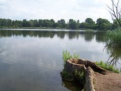 Der Malchower See befindet sich am nordöstlichen Stadtrand Berlins im Bezirk Lichtenberg