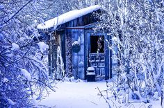 The Garden Shed waiting for spring
