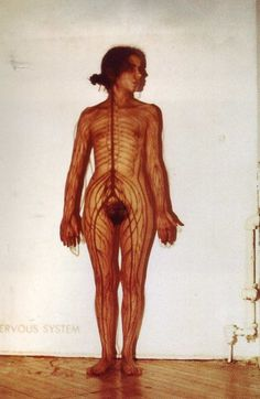 Ana Mendieta : The Nervous System