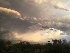 https://flic.kr/p/MXm21P | Tucson, Arizona October Sunset