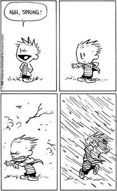 Add one with snow and you have Spring in Indiana. Calvin Und Hobbes, Calvin And Hobbes Quotes, Calvin And Hobbes Comics, Funny Quotes, Funny Memes, Hilarious, I Love To Laugh, Make Me Smile, Wedding Photographie