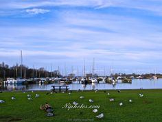 Kinnego Marina and boats in Lough Neagh