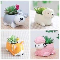 Unique and creative planters and pots you don't see very often, animal planters and concrete & ceramic planters. Combine these unique planters with your plant collection, the perfect planters for your small succulents, cacti or other houseplants! Resin Planters, Flower Planters, Flower Pots, Planter Pots, Cheap Planters, Tall Planters, Modern Planters, Indoor Planters, Concrete Planters