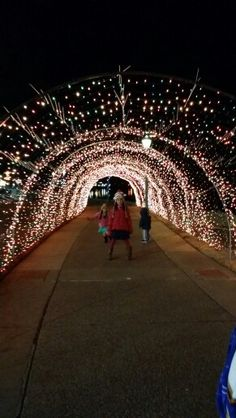 the dancing lights of christmas at jellystone park nashville tn 2016 youtube christmas lights pinterest jellystone park and christmas lights - Jellystone Park Nashville Christmas Lights