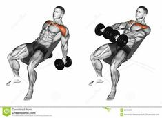 Photo about Lifting arms with dumbbells on incline bench. Exercising for bodybuilding Target muscles are marked in red. Initial and final steps. Illustration of over, arms, workout - 64784269 Chest Workout Routine, Chest Workouts, Gym Workout Videos, Gym Workouts, Swimming Workouts, Swimming Tips, Cycling Workout, Cycling Tips, Road Cycling