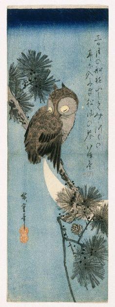 Owl on a Pine Branch ( between 1820 and 1840). Woodblock print by Utagawa Hiroshige (1797–1858).