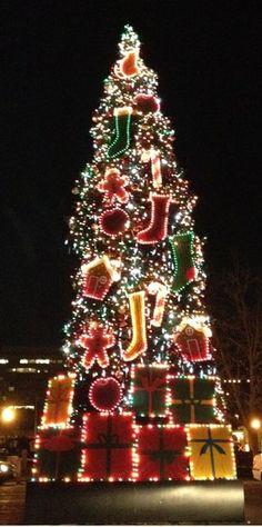 Christmas tree, Sacramento, California Christmas In America, Christmas In The City, Beautiful Christmas Trees, Christmas Scenes, Winter Christmas, Christmas Holidays, Xmas Trees, Merry Christmas, Holiday Lights