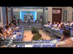 Sedinta de Consiliu Local 23.07.2015