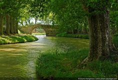 Balade le long du Canal du Midi -