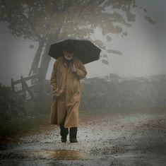 Umbrellas in the Rain - autumn rain