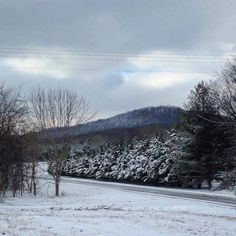View of Versailles Knob from Easy Tiger Farmstead in Tennessee.