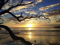 Golden. #Kauai, #Hawaii, #Flowkane, #Travel