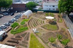 The Edible Schoolyard in Brooklyn, New York | Children learn to garden and about the process of growing food