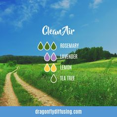 A stimulating and warming diffuser blend featuring Grapefruit, Cassia and Black Pepper essential oils from doTERRA Essential Oils Guide, Essential Oil Uses, Doterra Essential Oils, Doterra Blends, Essential Oil Combinations, Essential Oil Diffuser Blends, Aromatherapy Oils, Belleza Natural, Diffuser Recipes
