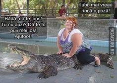 Animals And Pets, Funny Animals, Haha, Jokes, Humor, Funny Stuff, Beans, Random, Crocodile
