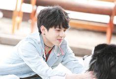 Dowoon as Danial K Pop, Park Jae Hyung, Day6 Dowoon, Bad Songs, Young K, Wattpad, Album Songs, Pop Bands, Kpop Groups