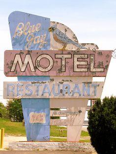Blue Jay Motel neon sign by SeeMidTN.com (aka Brent), via Flickr