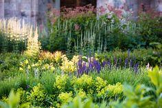 home - Dan Pearson Studio Beautiful Flowers Garden, Beautiful Gardens, Landscaping Plants, Garden Plants, Plant Design, Garden Design, Dan Pearson, Purple Garden, Garden Inspiration