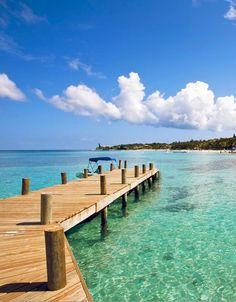 Roatan, Honduras: Great snorkeling right off the pier.