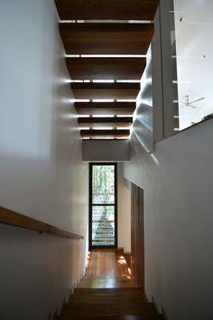 Galeria - Casa Joly / Stu/D/O Architects - 3