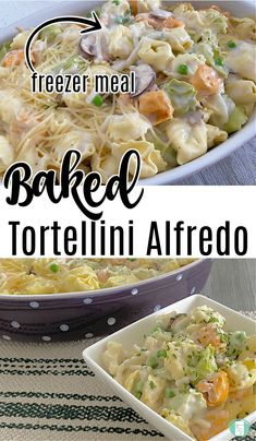 This quick and easy Baked Tortellini Alfredo is about to be your new favourite freezer meal. The pasta cooks right in the dish! #freezermeals101 #freezercooking #freezermeal #pasta