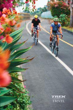 Trek Road Cyclists