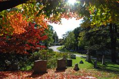 I love taking pictures in/of cemeteries. Now I have a travel brochure! 20 Cemeteries You Need to Visit Before You Die