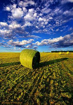 A Farmers' Day