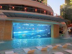 YES YES YES Amazing Hotel Pools - Golden Nugget Hotel: Aquarium and pool, Las Vegas, Nevada, USA
