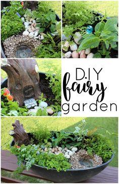 DIY Fairy Garden. This tutorial is so easy!