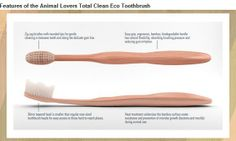 Animal Lovers Total Clean Eco Toothbrush Help us produce an eco bamboo toothbrush that gives you an advanced clean. Contribute now to make this product possible.
