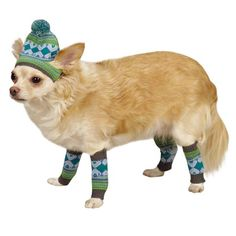 ESC Northern Lights Hat and Leg Warmer Sets