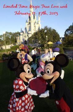Limited Time Magic True Love week Feb 2013 #Disney