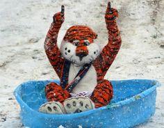 #Aubie in the Snow!