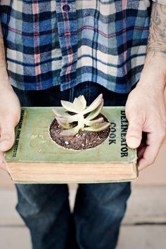Very neat - plant in a book.