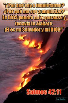 """- Salmos 42:11 - """"¿Por qué voy a inquietarme? ¿Por qué me voy a angustiar? En DIOS pondré mi esperanza, y todavía lo alabaré. ¡Él es mi Salvador y mi DIOS!"""""""