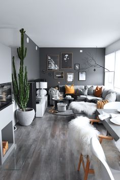 Dark grey wall living room with indoor plants and orange details. Energizing and cozy interior.