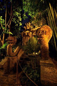 Disneyland - Adventureland - Indiana Jones Adventure