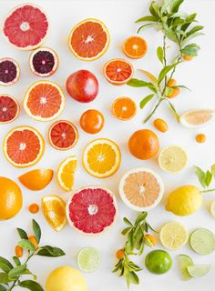 oranges ,grapefruit,kiwi, lemon and other fruits sliced Throw Pillow by - Cover x with pillow insert - Tolle Desserts, Köstliche Desserts, Fruit And Veg, Fruits And Veggies, Citrus Fruits, Fruit Slice, Grapefruit, Food Styling, Food Art
