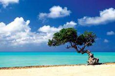 """Caribbean Zen Moment"" - Beach and Coastal Views posters and prints available at Barewalls.com"