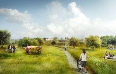 Dünyanın En Büyük Yeşil Çatısı Tasarlandı