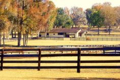 Emerald Oaks Horse Farms For Sale - Rob & Chris Desino, Ocala Ranches For Sale and Florida Horse Farms For Sale - sold $2200000