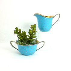 Hey, I found this really awesome Etsy listing at https://www.etsy.com/il-en/listing/252319730/teal-blue-silver-indoor-planters