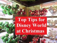 Click on this pin for a list of our top tops tips for a great Disney World Christmas vacation!  See: http://www.buildabettermousetrip.com/top-tips-for-disney-world-at-christmas